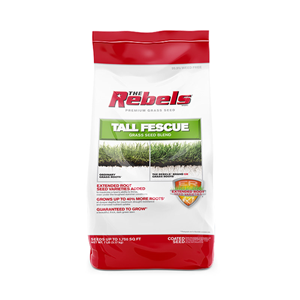 Rebels Tall Fescue